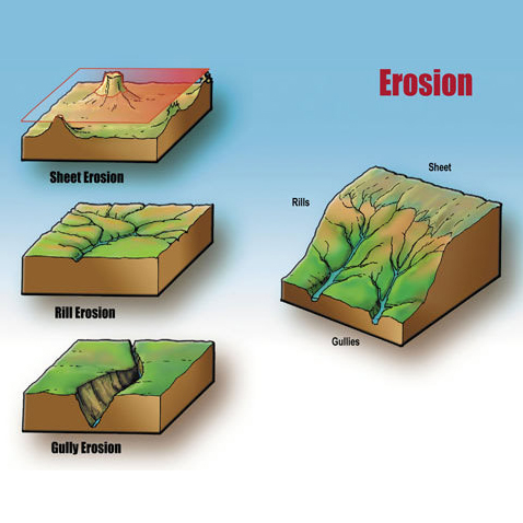 Soil Erosion Diagram for Washington State University